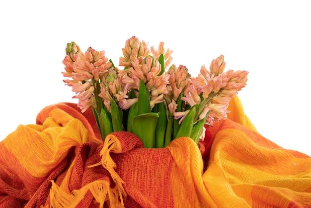 Isoliert von einem strauß hyazinthenblüten, eingewickelt in einen orangefarbenen schal
