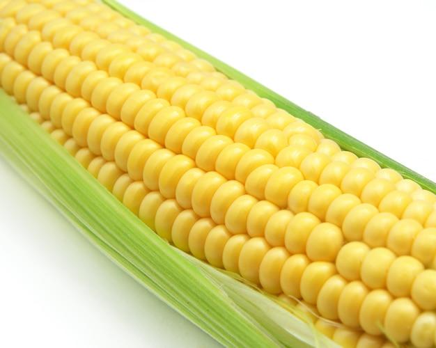 Isolierter mais