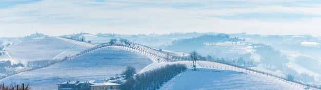 Italien piemont: weinbergreihe, einzigartige landschaft im winter mit schnee