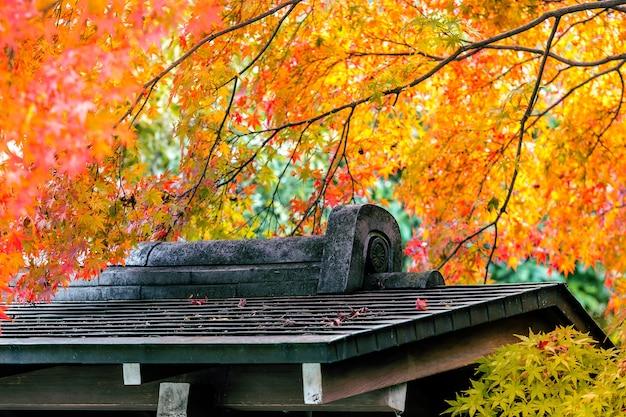 Japanische herbstsaison mit architekturdach im park, japan.