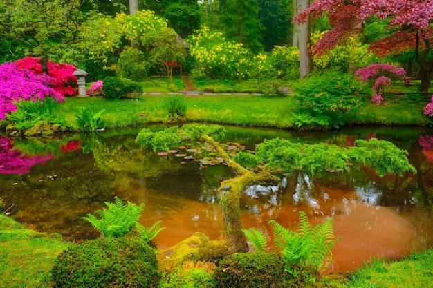 Japanischer gartenpark clingendael den haag niederlande