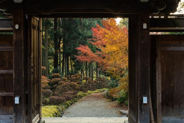 Japanischer tempel holztür blick, weg zum garten voller bunter vegetation im herbst.