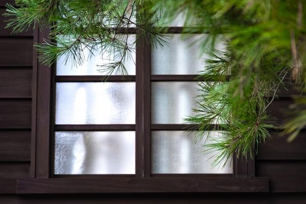 Japanisches fenster der alten art und weißes gewebe nach innen. die grüne kiefer vorne