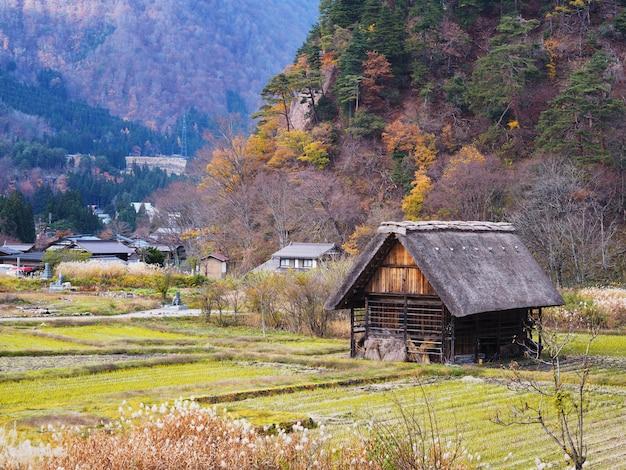 Japanisches landhaus und reisfeld