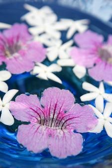 Jasmin und rosa asarina, kerzen und blaues wasser