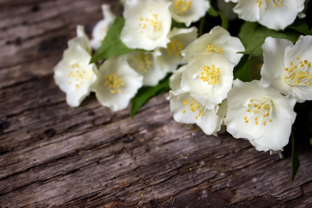 Jasminblüten und -blätter auf braunem holzbrett.