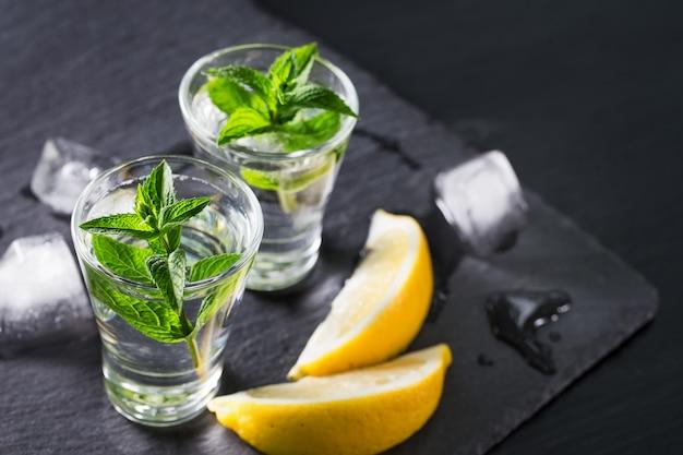 Jin oder wodka mit minzscheiben von zitrone und eis