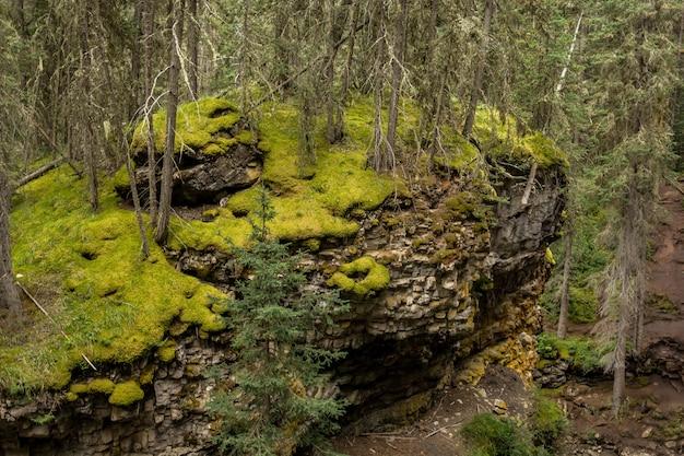Johnston canyon falls alberta kanada schöner wasserfall in der schlucht