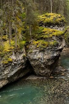 Johnston canyon falls, alberta, kanada. wasserfall am johnston canyon in banff. schöner kleiner wasserfall in der schlucht