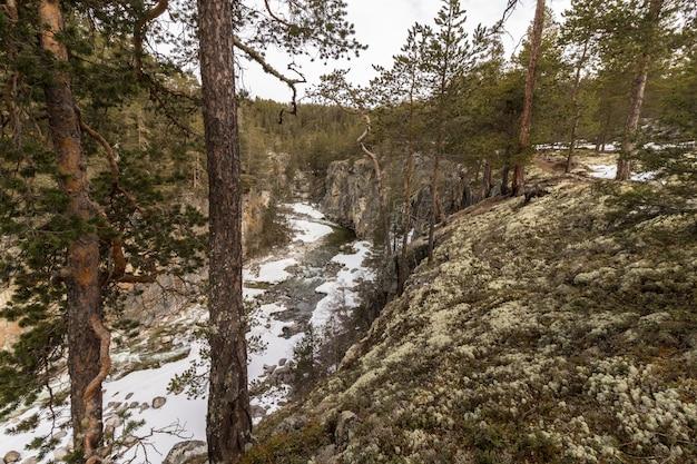 Jora river in dombaas, oppland in norwegen.