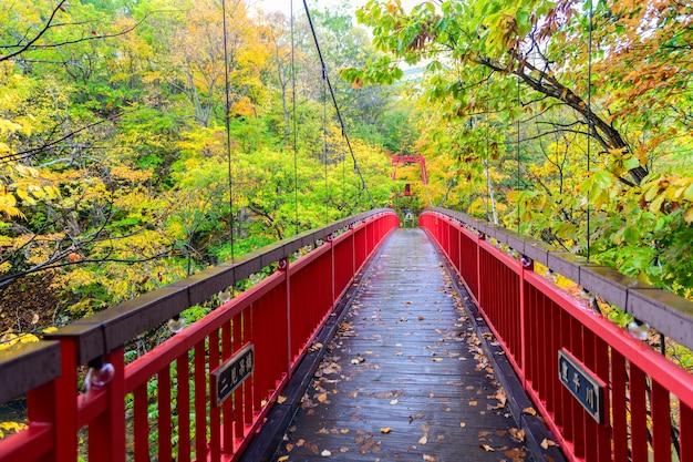 Jozankei futami-hängebrücke und herbstwald