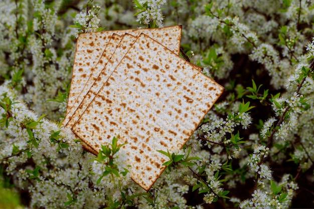 Judentum und religion auf jüdischem matza auf passahfest