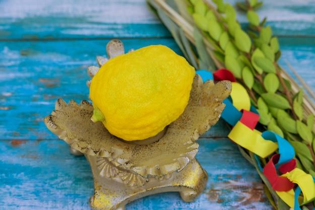 Jüdischer feiertag sukkot traditionelle symbole vier arten etrog lulav hadas arava