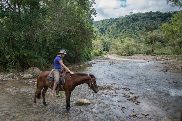 Jugendliche, die einen fluss auf einem pferd, finca el cisne, honduras kreuzt