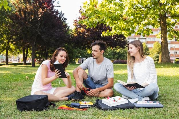 Jugendliche, die im park zusammen studieren