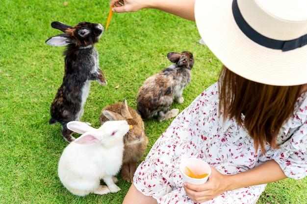 Junge asiatische frau, die ein kaninchen füttert