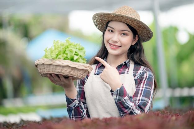 Junge asiatische frau lächelt, die gemüse von ihrer hydrokulturfarm erntet
