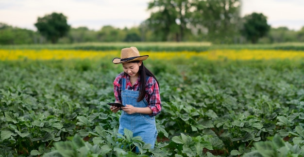 Junge asiatische frau landwirt prüft die qualität der pflanze im grünen. moderne hydrophonische landwirtschaft