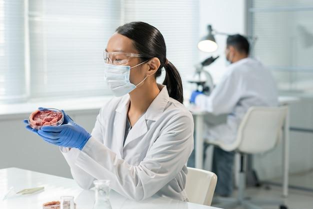 Junge behandschuhte forscherin in weißkittel, schutzmaske und brille, die eine probe von rohem gemüsefleisch in einer petrischale betrachtet