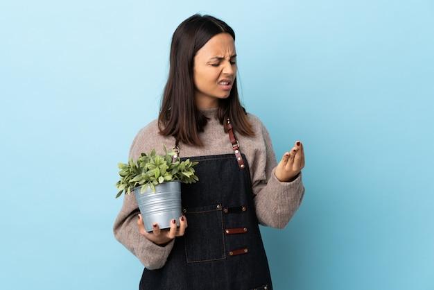 Junge brünette mischrassenfrau, die eine pflanze über isolierter blauer wand hält, die unter schmerzen in den händen leidet