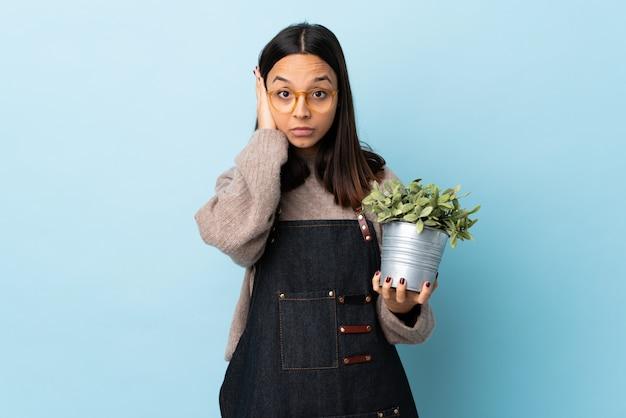 Junge brünette mischrassenfrau, die eine pflanze über lokalisiertem blauem hintergrund hält, frustriert und ohren bedeckt