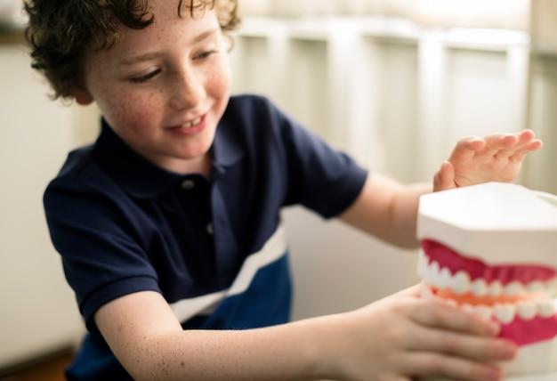 Junge, der mit einem zahnmedizinischen modell spielt
