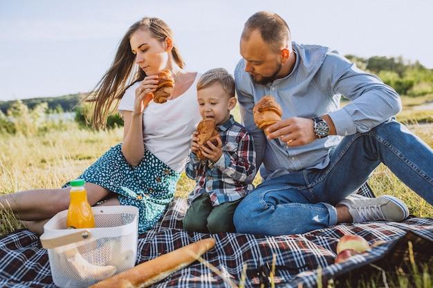 Junge familie mit dem kleinen sohn, der picknick im park hat