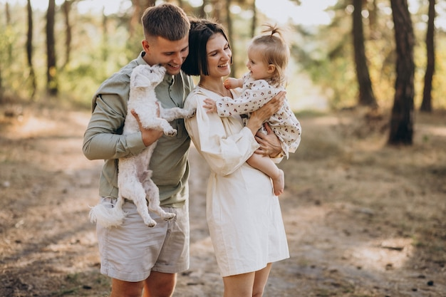 Junge familie mit der niedlichen kleinen tochter, die im wald auf dem sonnenuntergang geht