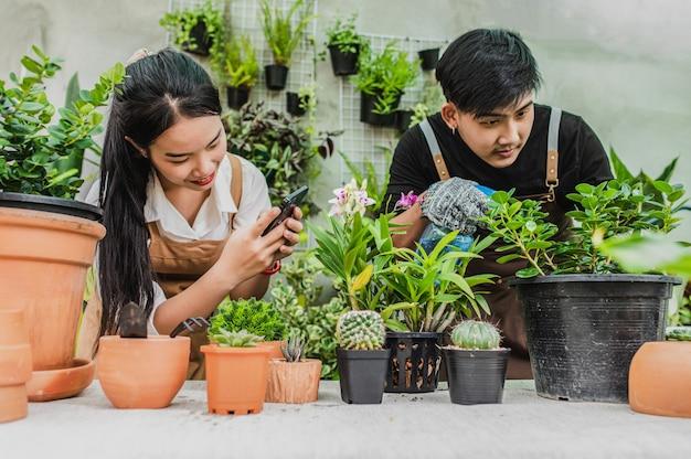 Junge frau benutzt smartphone, um ein foto vom kaktus zu machen, sie lächelt glücklich, junger mann kümmert sich um zimmerpflanze