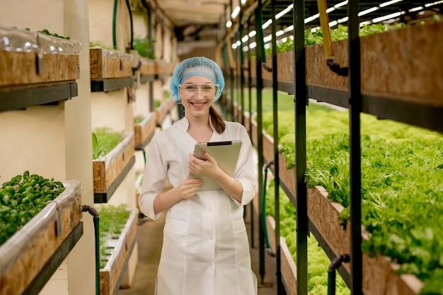 Junge frau biotechnologe mit tablet, um qualität und quantität des gemüses in der hydrokulturfarm zu überprüfen. einsatz von technologie, um die arbeitszeit zu reduzieren und komfortabler zu machen. grüne salate im hintergrund.