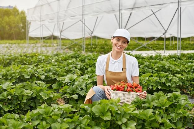 Junge frau, die erdbeeren im gewächshaus erntet
