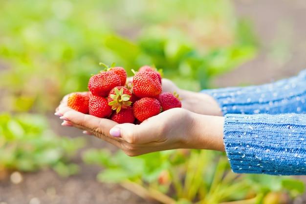 Junge frau, die erdbeeren in einer hand hält