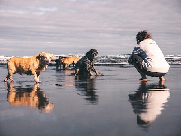 Junge frau, die fotos ihrer hunde auf dem strand macht