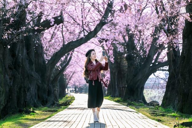 Junge frau, die im kirschblütengarten an einem frühlingstag geht. reihenkirschblütenbäume in kyoto, japan