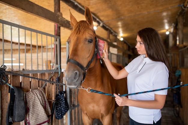 Junge frau, die mähne des braunen reinrassigen rennpferdes bürstet, während sie vor dem reittraining im stall steht