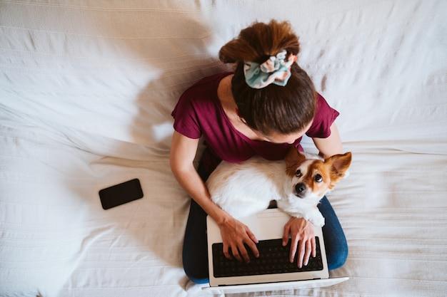 Junge frau, die zu hause am laptop arbeitet, sitzt auf der couch, niedlicher kleiner hund außerdem. technologie- und haustierkonzept