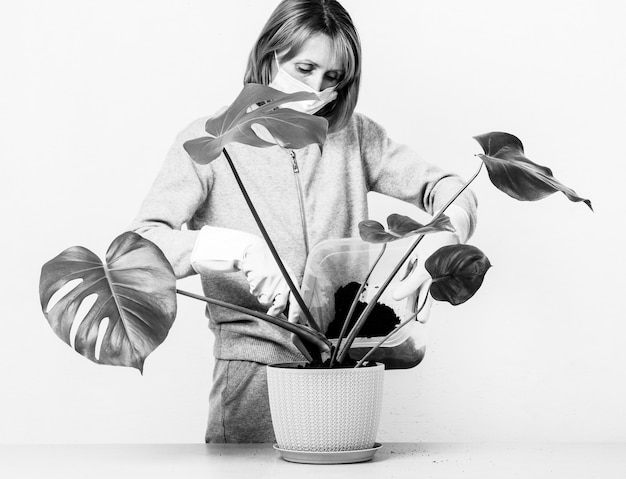 Junge frau in einer medizinischen maske schaufelt erde in einen blumentopf mit einer tropischen zimmerpflanzenmonstera