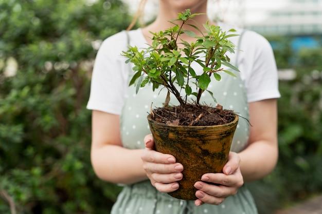 Junge frau kümmert sich um ihre pflanzen