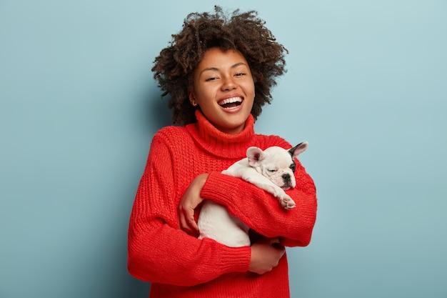 Junge frau mit afro-haarschnitt, der kleinen hund hält