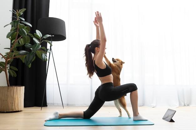 Junge frau trainiert mit ihrem hund exercising
