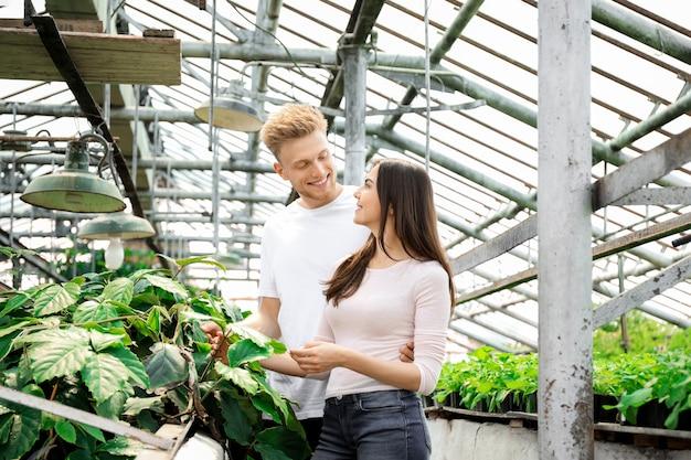 Junge gärtner, die im gewächshaus arbeiten
