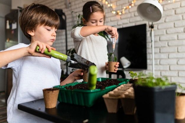 Junge geschwister, die zu hause getreide pflanzen
