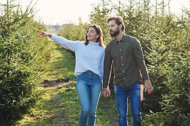 Junge glückliche familie, die weihnachtsbaum an der plantage wählt, die feiertage vorbereitet.