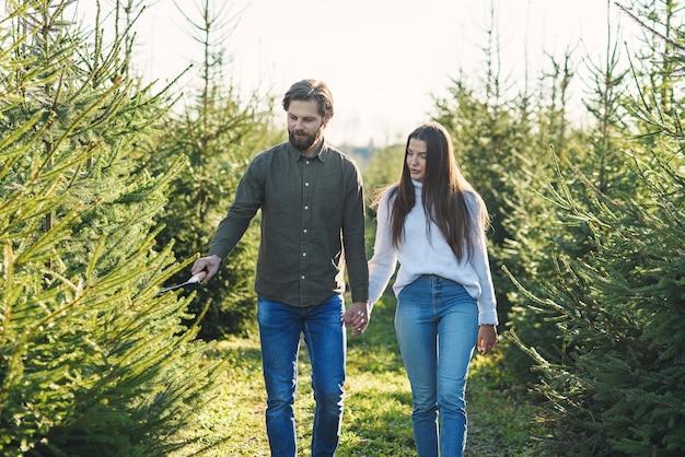 Junge glückliche familie, die weihnachtsbaum an der plantage wählt, die winterferien vorbereitet.