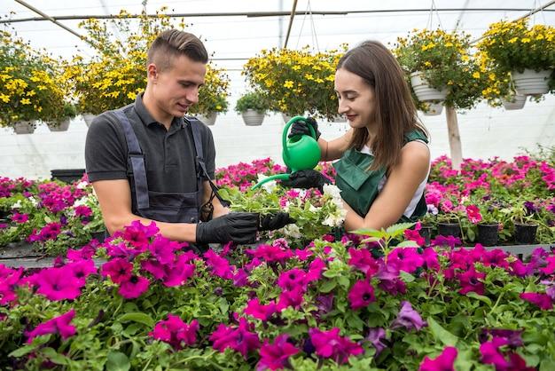 Junge glückliche paare, die bewässerungspflanzen mit einer gießkanne in der blumenmitte arbeiten