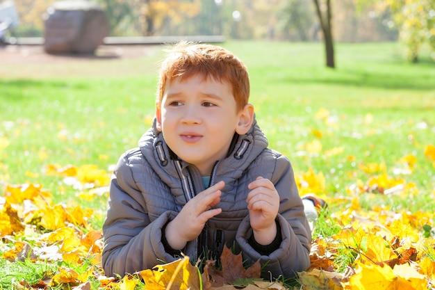 Junge im herbstpark