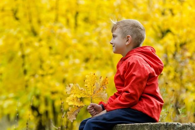 Junge in der roten jacke, die auf einem baumstumpf im herbstwald sitzt. seitenansicht