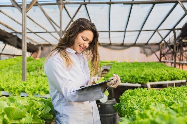 Junge ingenieurin, die salat in einem hydrokulturgarten prüft.