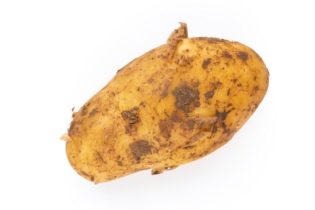 Junge kartoffel isoliert auf weißer oberfläche. ernte neu. flache lage, draufsicht.