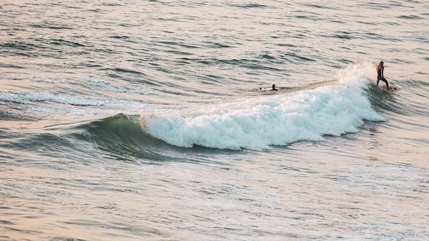 Junge leute, die an einem sonnigen tag am meer surfen